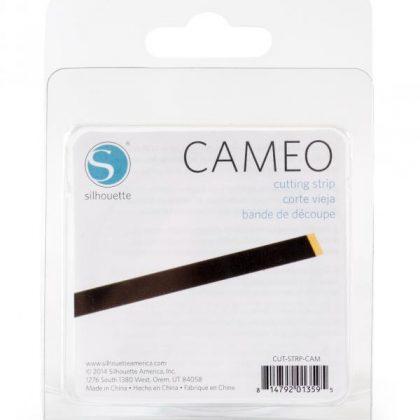 cut-strp-cam_02-xl